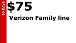 Verizon Family Share $75